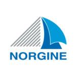 logo_norgin